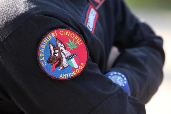 Vengono utilizzati per attività antidroga e anti espolosivo: sono i cani del Nucleo cinofili dei Carabinieri di Bologna, che supportano i militari in operazione di ricerca e di soccorso. Questa mattina, quattro unità cinofile specializzate sono state impegnate in una simulazione ai Giardini Margherita