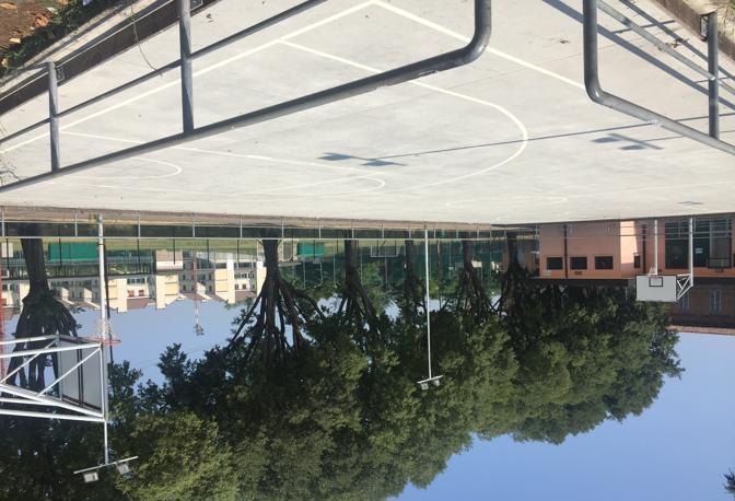 CENTRO SPORTIVO PIZZOLI Campo ricavato all'interno di una pista di pattinaggio, tutto sommato dignitoso nonostante il peso degli anni.