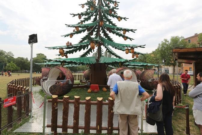 La giostra per i disabili l 39 albero della felicit for Cabine del parco del windrock