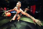 Prorogata «Body Worlds»  - Dato il grande afflusso di pubblico, è stata prorogata fino al 30 marzo la mostra «Body worlds» ospitata da novembre all'ex Gam, in zona Fiera, con i corpi (veri) «plastinati» da Gunther von Hagens