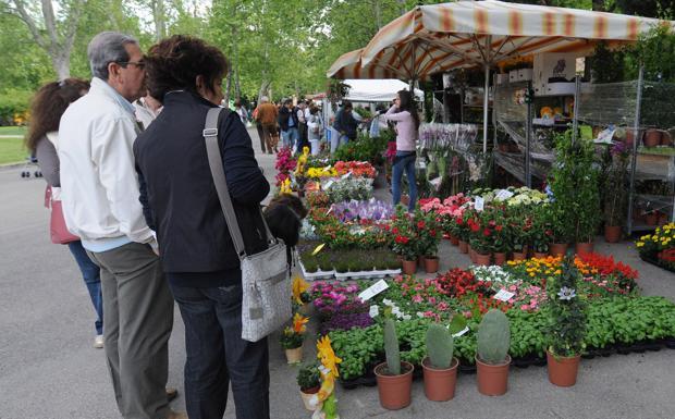 Tra i fiori ai giardini foto del giorno corriere di - Artigianato per cristiani ...