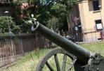 Cannone hippy  - Spunta un fiore nel vecchio cannone, al Museo del Risorgimento