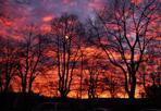 Sera di fuoco - È finito in migliaia di foto sui social il tramonto di venerdì sera a Bologna: rosa, poi rosso-arancione, in effetti spettacolare.