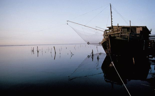 Via al fermo pesca -  Da oggi, 25 luglio, è scattato il fermo pesca per le barche dell'Emilia Romagna. L'interruzione temporanea dell'attività di pesca dura per 43 giorni, fino al 5 settembre, e interessa tutte le flotte da Trieste a Rimini. L'obiettivo, spiega la Coldiretti Impresapesca, è di favorire il ripopolamento del mare.  In questo periodo, dunque, occhio a quello che arriva nel piatto.  In questo periodo, per mangiare pesce italiano, le provenienze da preferire sono quelle dalle Gsa 9 (Mar Ligure e Tirreno), 10 (Tirreno centro meridionale), 11 (mari di Sardegna), 16 (coste meridionali della Sicilia), 18 (Adriatico meridionale), 19 (Jonio occidentale), oltre che dalle attigue 7 (Golfo del Leon), 8 (Corsica) e 15 (Malta).