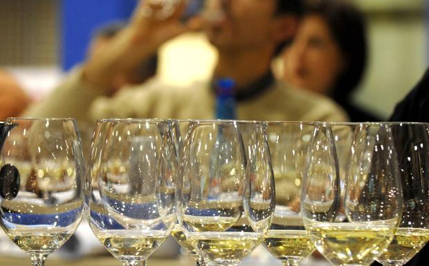 Wine City Day al Bolognetti - Nel quadriportico di Vicolo Bolognetti oggi dalle 12 alle 23 torna Wine City Day, giornata all'insegna del buon bere. I 13 osti dell'associazione Amo promettono di «mantenere alta la felicità» con un totale di 33 etichette diverse. Al vino (da 2 a 4 euro al calice) si associa un'offerta gastronomica tra tapas (3 euro) a piatti ricercati (6 euro).