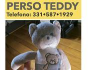 « Teddy è sparito, mia figlia non ride più» L'appello del papà per ritrovare il peluche