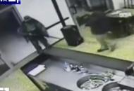 «Igor sparò a bruciapelo»Il medico legale sull'omicidio Fabbri